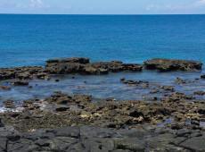 Rejeitos da lama da Samarco atingiram corais de Abrolhos, a 250 km da foz do rio Doce, diz estudo