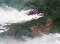 Putin envia militares para combater incêndios florestais na Sibéria
