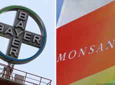 Comunidade rural chilena se volta contra Bayer-Monsanto