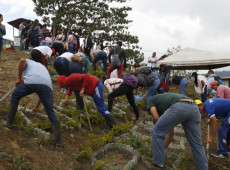 Así viven los exguerrilleros de las FARC