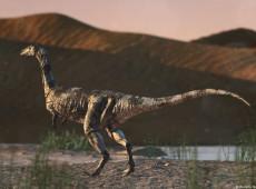 Nova espécie de dinossauro é descoberta no Brasil