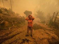 Nove questões para entender os incêndios florestais em Portugal
