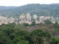 A tragédia amazônica repetida 50 anos depois da ditadura civil-militar