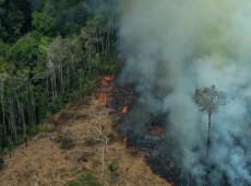 Bolsonaro brigar com os dados não vai enganar o resto do mundo, diz pesquisador sobre queimadas na Amazônia