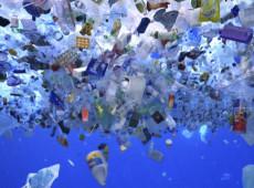Microplástico é encontrado em animais no fundo dos oceanos
