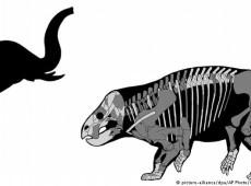 Descoberto fóssil de gigante herbívoro contemporâneo dos dinossauros