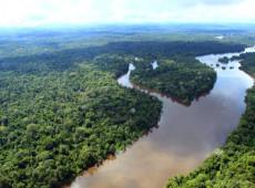 Desmatamento na Amazônia cresce mais de 200% em outubro