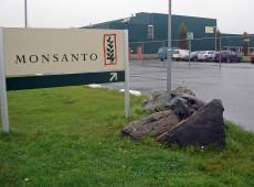 Monsanto é acusada de 'fichar' personalidades francesas que criticavam seus pesticidas
