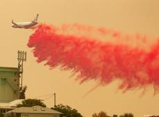 Austrália enfrenta grandes incêndios florestais