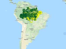 Edital do Ibama abre espaço para empresa dos EUA monitorar Amazônia