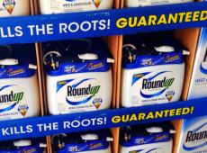 Monsanto é condenada pela 3ª vez a pagar indenização bilionária por agrotóxico Roundup
