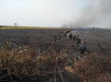 França envia equipe para combater incêndios florestais na Amazônia boliviana