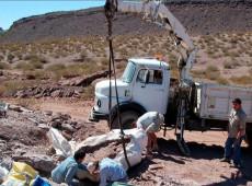 Nova espécie de dinossauro gigante é descoberta na Argentina