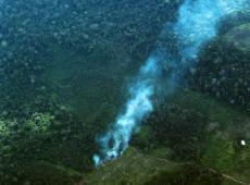 Desmatamento é principal causador de incêndios na Amazônia, diz especialista